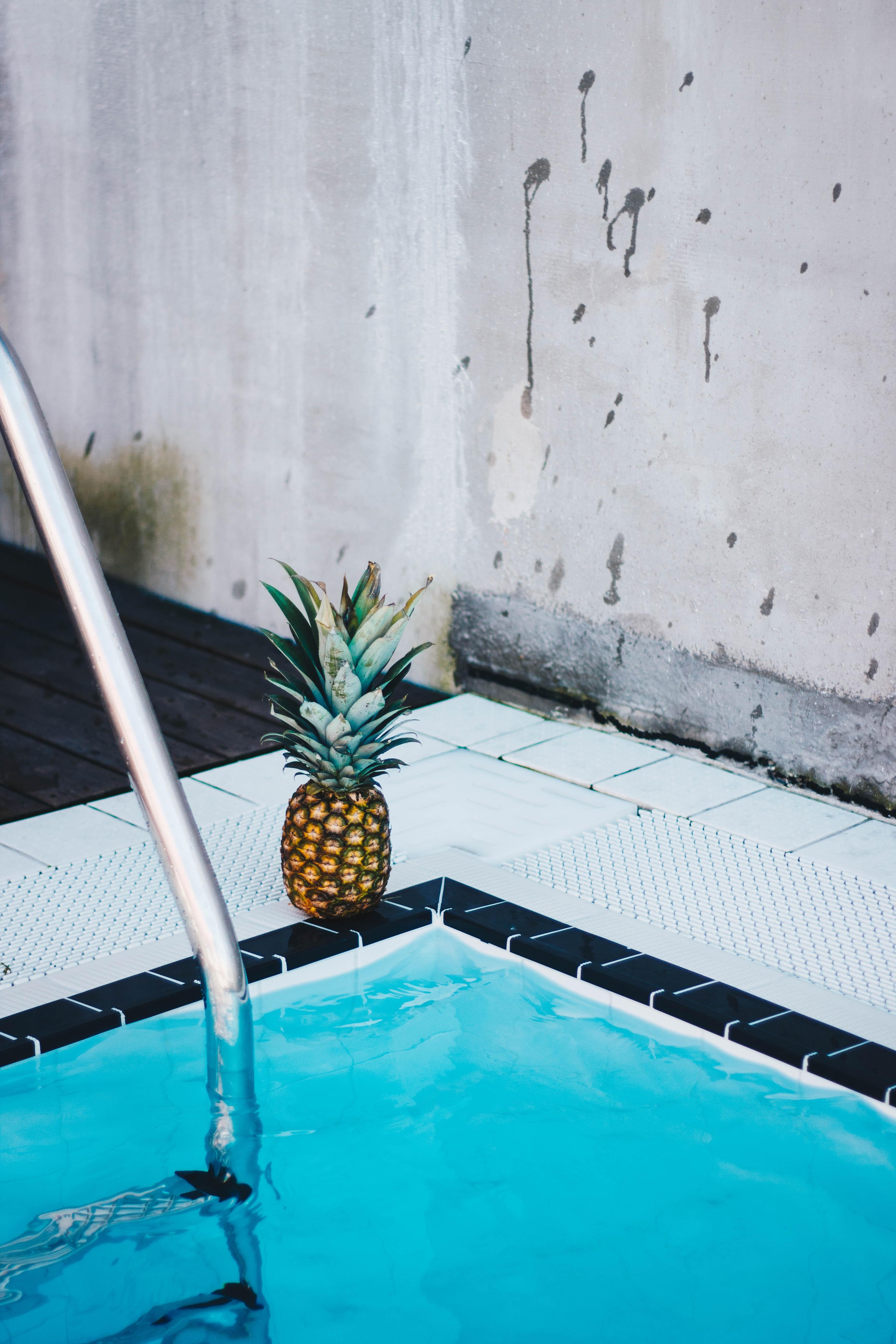 meilleur thermometre de piscine